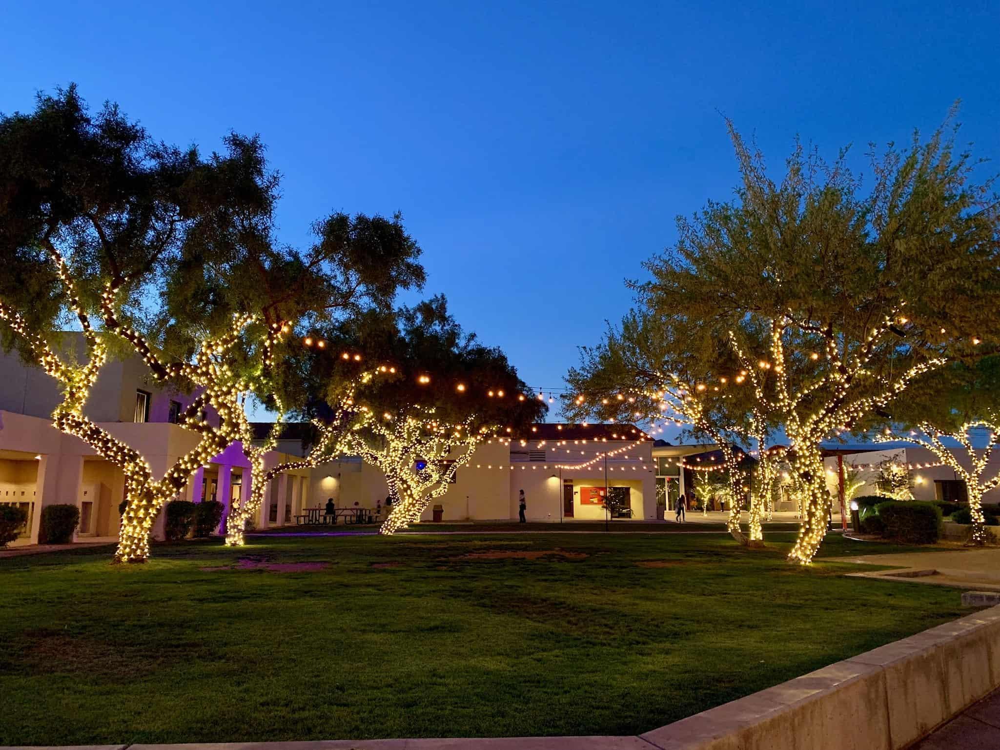Bistro and Tree Lighting 2