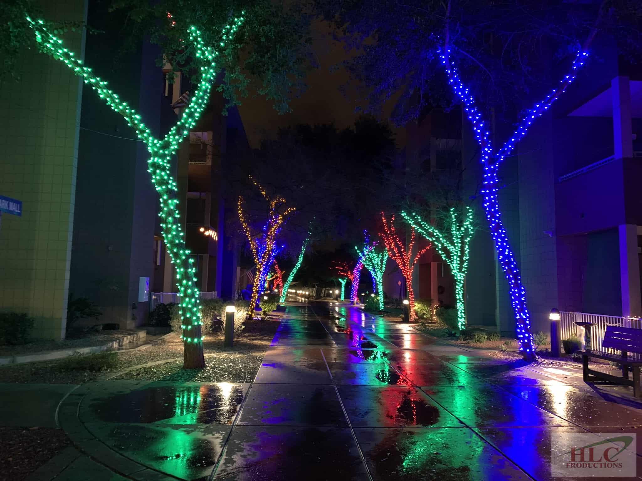 Beatitudes - Multi Colored Trees
