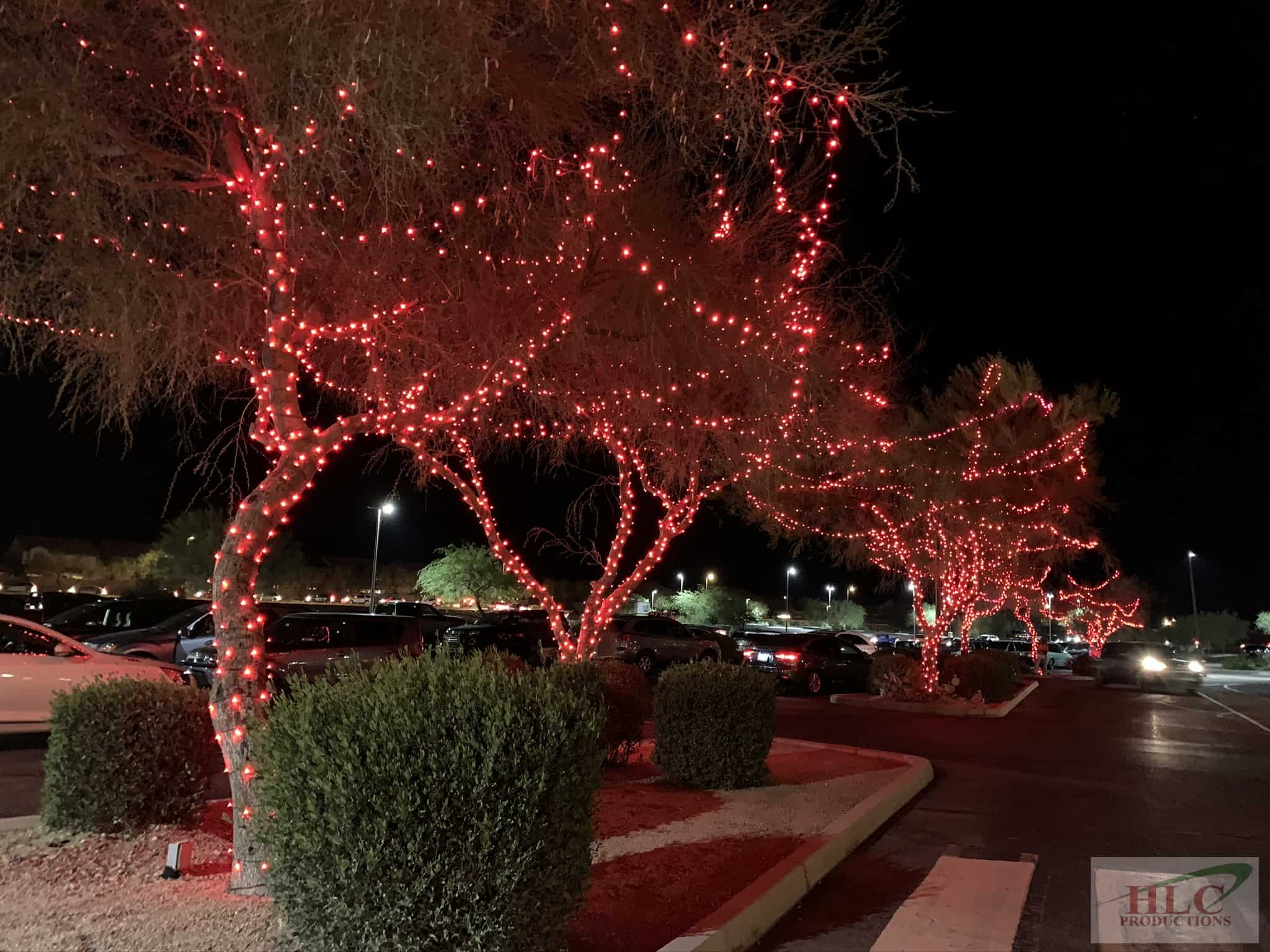 Outlets at Anthem Red Trees